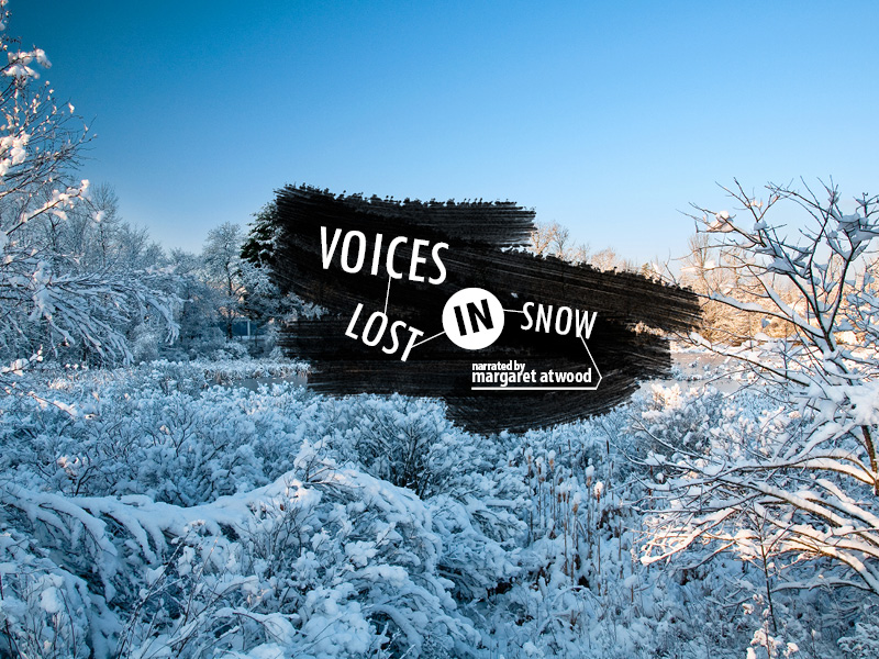 voices lost in snow